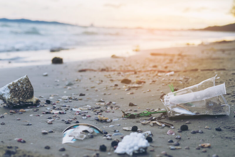 plastics and chemical pollution